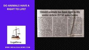 Do animals have a right to life?