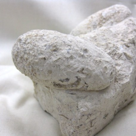 Eocene Age Fossil Crocodile Egg from Bouxwiller France