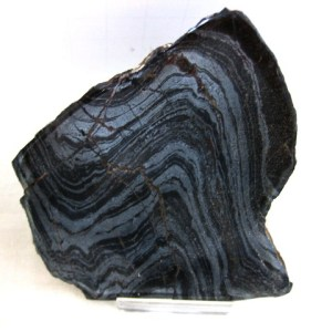 Fossil Precambrian Age Banded Iron Stromatolite from Wisconsin