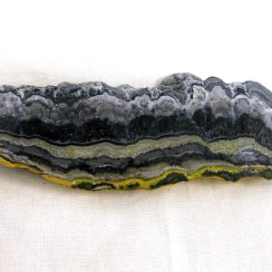 "Pliocene ~ Pleistocene Age Bumble Bee ""Jasper"" Mineral from Indonesia"