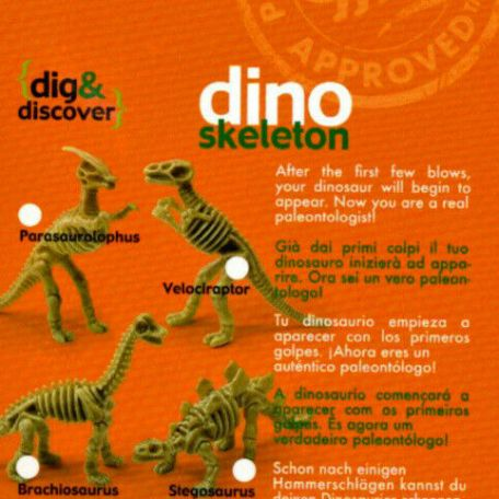 Dig & Discover Dino Skeleton Excavation Kit 3