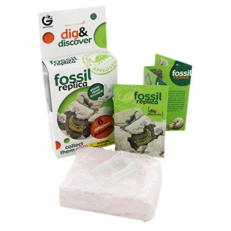 Dig & Discover Fossil Replica Excavation Kit 2