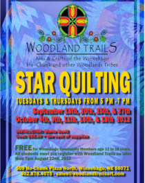 Star Quilting Classes-Woodland Trails