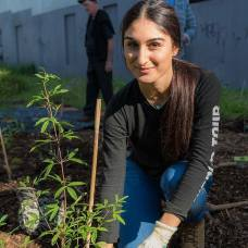 Miss Earth Australia 2017 finalists planting trees