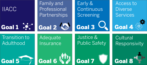IIACC Goals