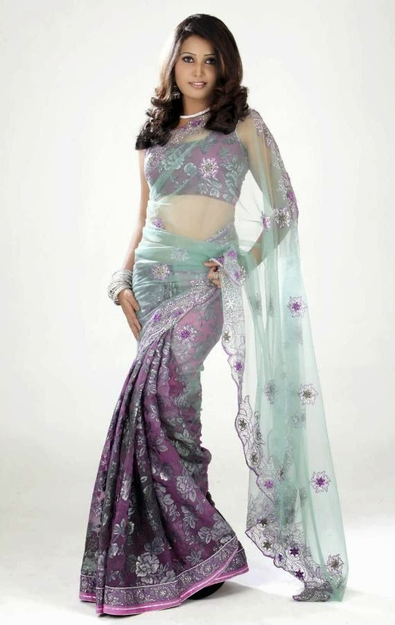 Sandra Amy Saree Photoshoot_006