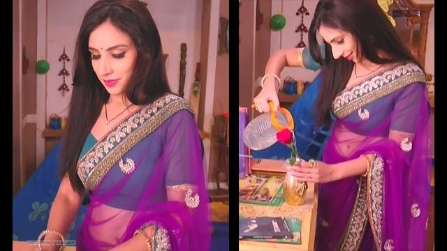Simran Kaur_TV Actress_07_Saree navel pics