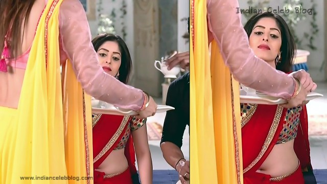 Hindi TV Actress_02_Hot Saree navel Photo