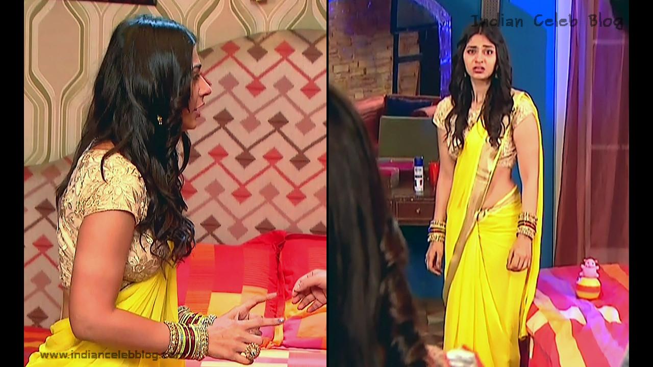Vidhi Pandya_Hindi TV Actress_03_Hot Saree Pics