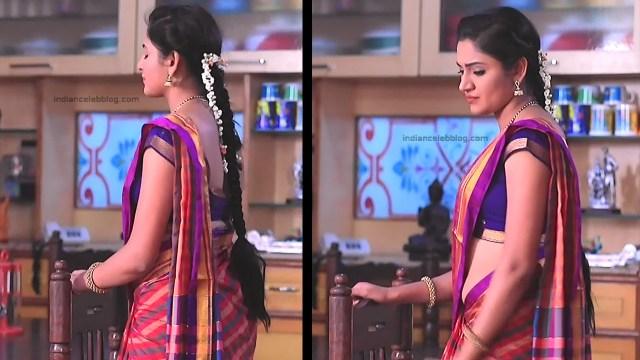 Ranjani Raghavan_Kannada TV Actress_11_Hot Saree Pics
