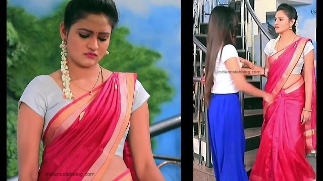 Ranjani Raghavan_Kannada TV Actress_4_Hot Saree Pics