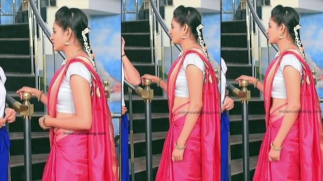 Ranjani Raghavan_Kannada TV Actress_5_Hot Saree Pics