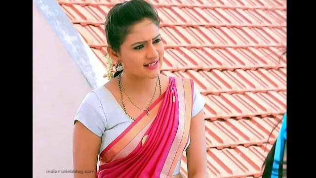 Ranjani Raghavan_Kannada TV Actress_6_Hot Saree Pics