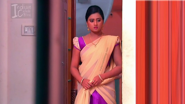 Telugu TV Actress_16_Hot Saree Pic