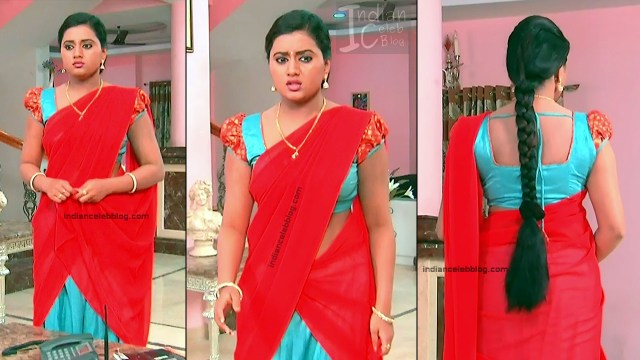 Telugu TV Actress_5_Hot Saree Pic