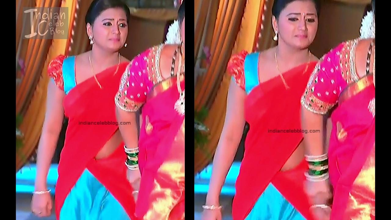 Telugu TV Actress_9_Hot Saree Pic