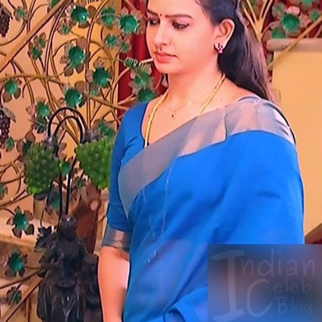 Divya_Tamil TV Actress SMG-S2_6_Saree photo