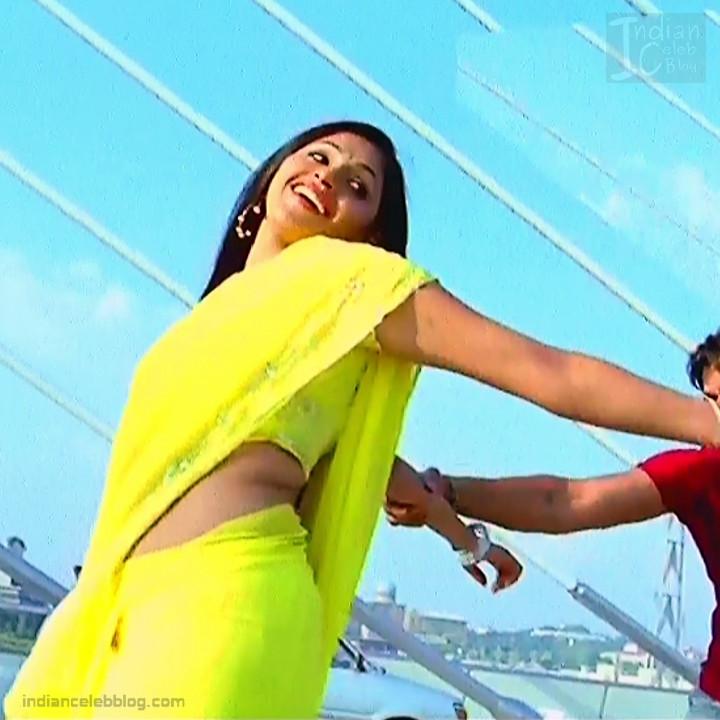 Hema_Tamil Actress_4_Hot Saree Pics