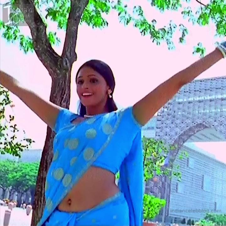 Hema_Tamil Actress_8_Hot Saree Pics
