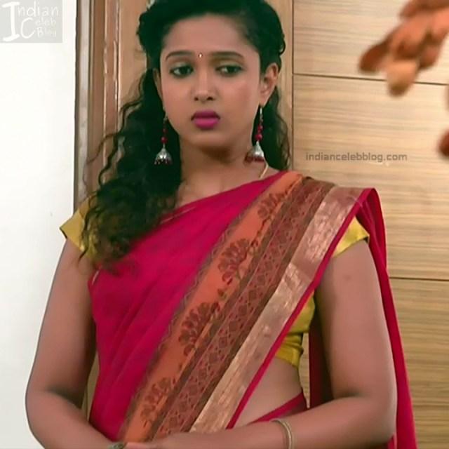 Kannada TV Actress Gallery 2_15_Hot saree pics