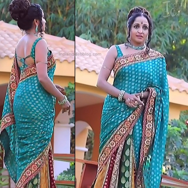 Kannada TV Actress_Comp 1 Mature_12_Hot Saree photos