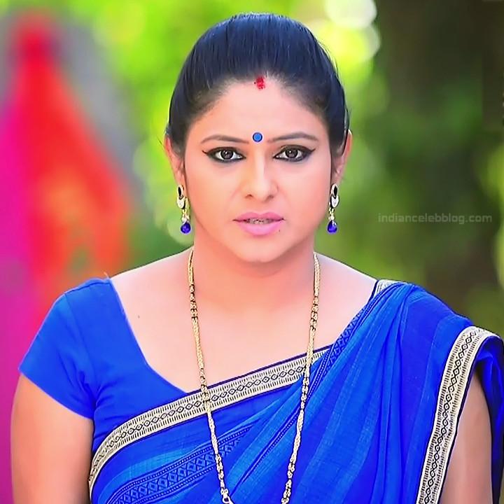Kannada TV Actress_Comp 1 Mature_3_Hot Saree photos