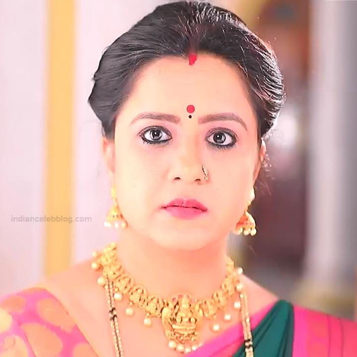 Kannada TV Actress_Comp 1 Mature_7_Hot Saree photos