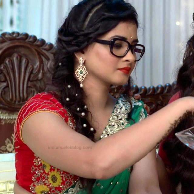 Neha Dangal_Hindi TV Actress TumhiHBST-S1_5_Hot Saree pics
