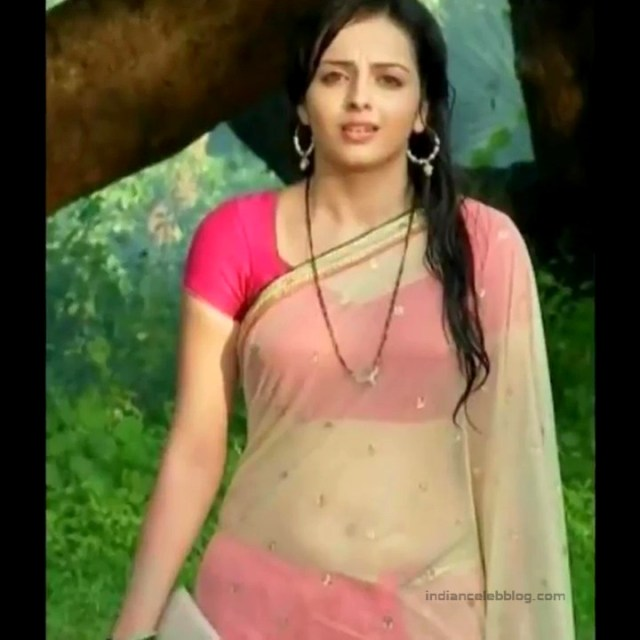 Shrenu Parikh_Hindi TV Actress - Hot Saree Pics S1_22