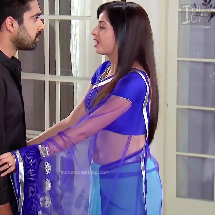 Shrenu Parikh_Hindi TV Actress - Hot Saree Pics S1_7