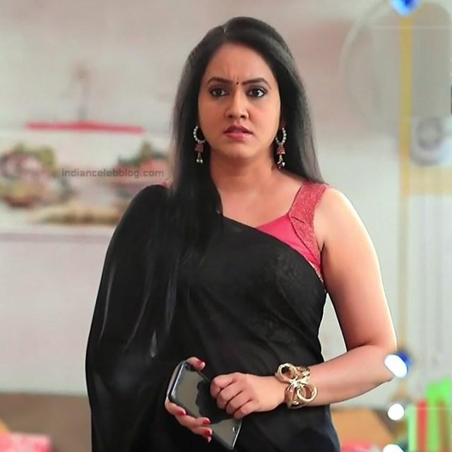 Sindhu Kalyan_Kannada TV Actress PuttaGM-S1_15_Hot Saree pics