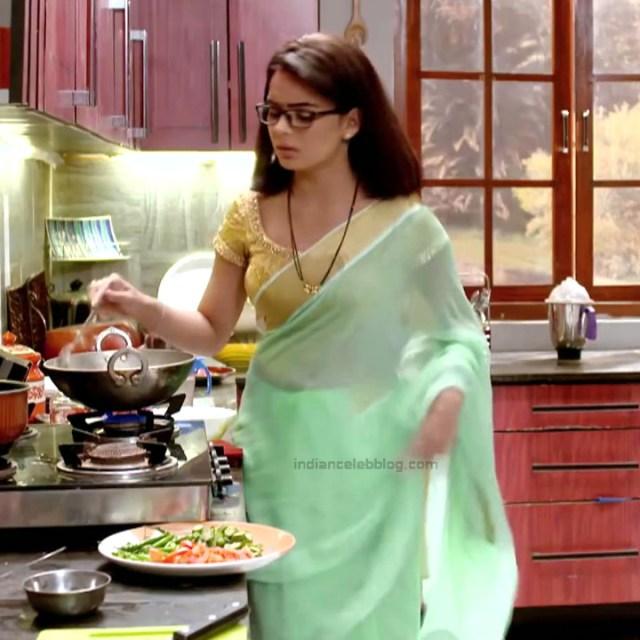 Sonal Vengurlekar_Hindi TV Actress YehVR-S5_12_Hot Saree Images