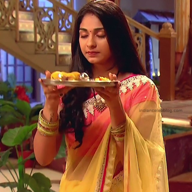 Vidhi Pandya_Hindi TV Actress Ud-S2_8_Hot saree pics