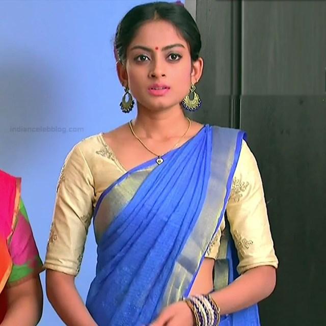 Telugu TV Actress_MCmplS2_1_Hot saree photo