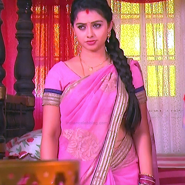 Aishwarya Meghana Telugu TV actress AgniSS2 10 hot sari pics