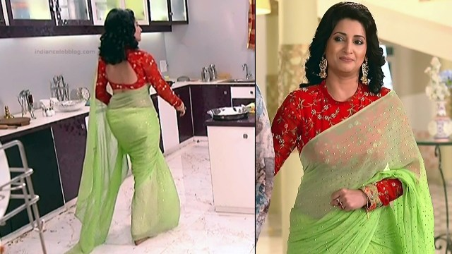 Sonica Handa Hindi TV Actress SavitriDCHS1 10 hot saree pics