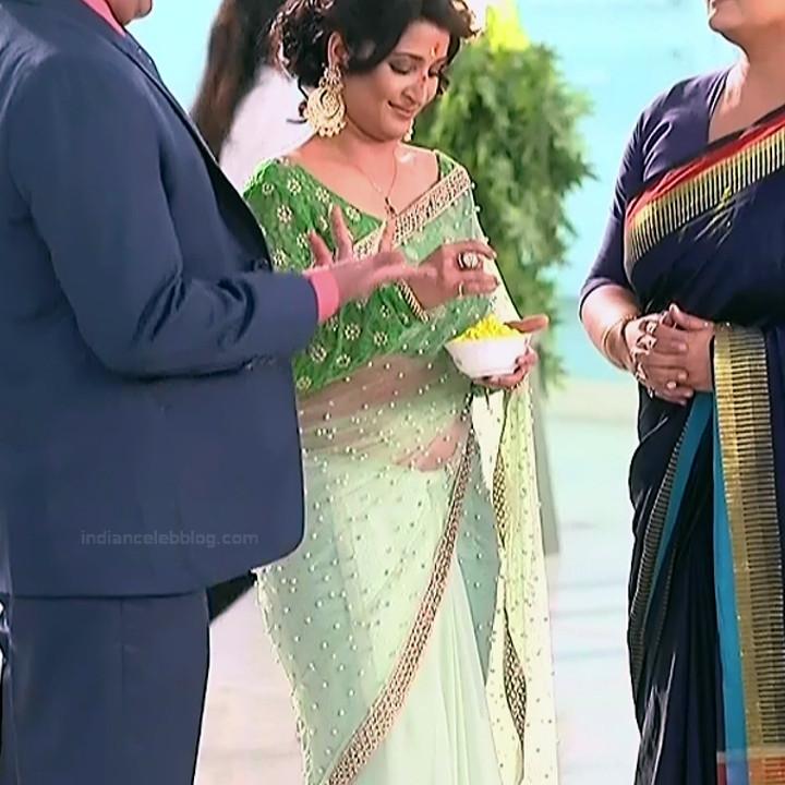 Sonica Handa Hindi TV Actress SavitriDCHS1 12 hot saree pics