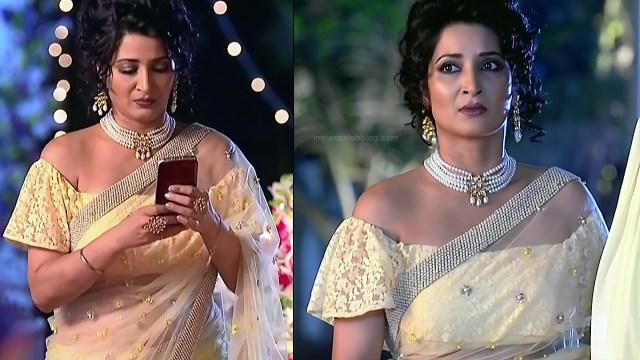 Sonica Handa Hindi TV Actress SavitriDCHS1 14 hot saree pics