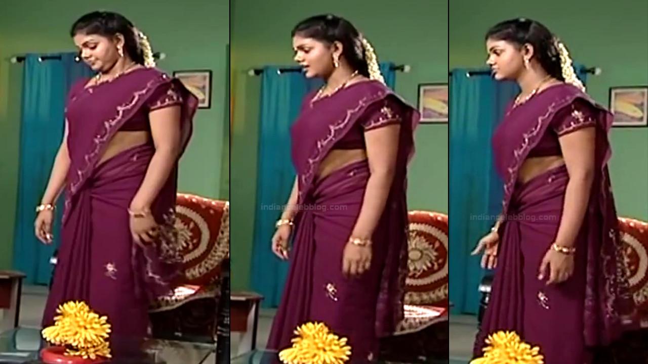 Telugu TV Actress Maa Nanna Art1-S1 11 Hot Saree Caps