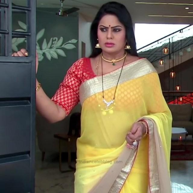 Telugu TV serial mature actress Comp2 11 hot saree photo