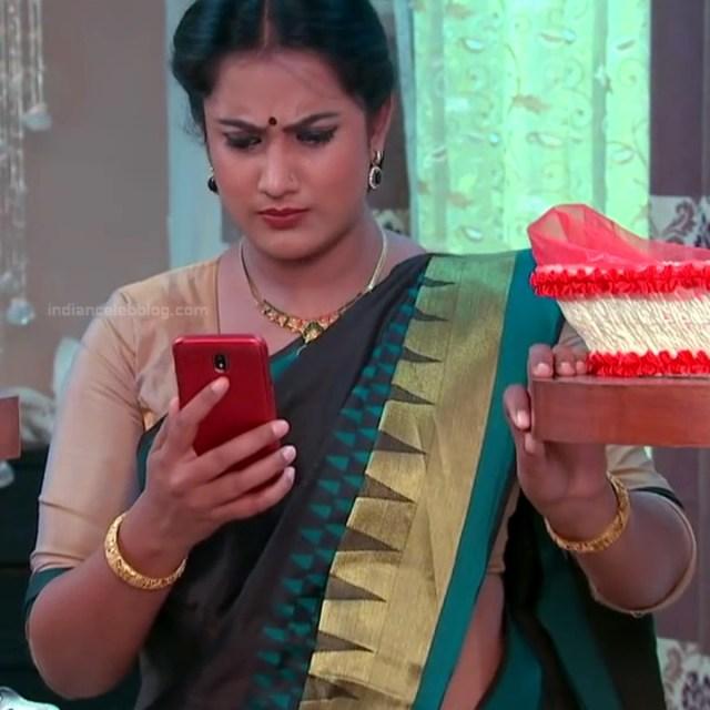Telugu TV serial mature actress Comp2 16 hot saree photo