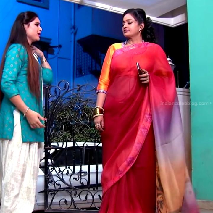 Telugu TV serial mature actress Comp2 2 hot saree photo