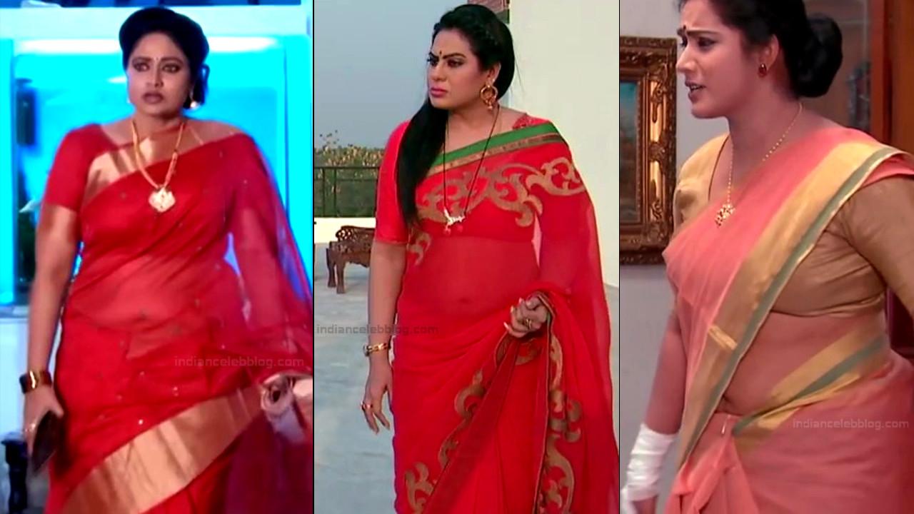 Telugu serial actress hot saree navel show