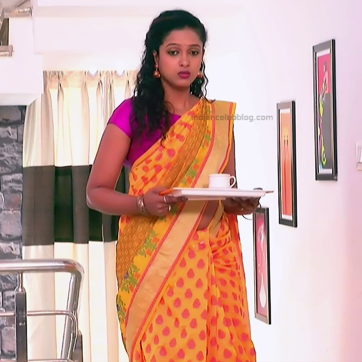 Apoorva Bharadwaj Kannada Serial Sathyam SSS1 16 hot saree photo