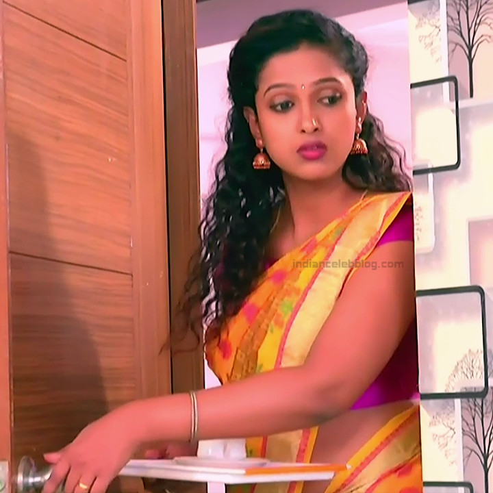 Apoorva Bharadwaj Kannada Serial Sathyam SSS1 17 hot saree photo