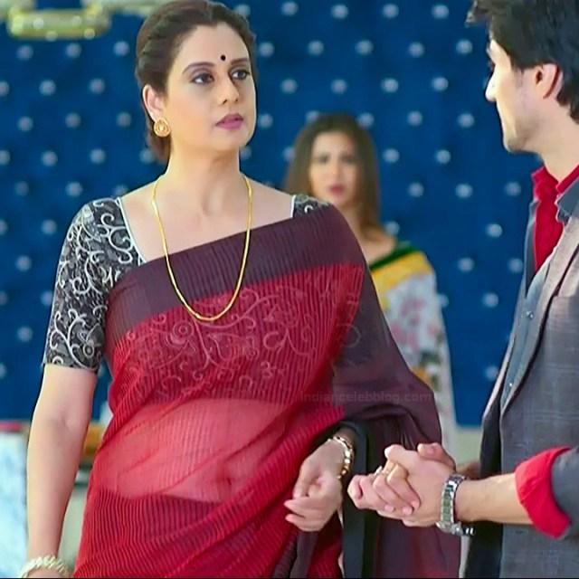 Hindi TV actress mature CompS3 15 transparent sari photo