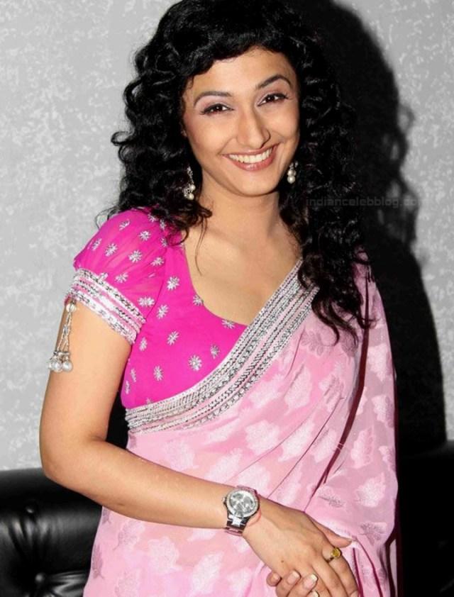 Ragini Khanna Hindi TV Actress CelebTS1 13 hot Saree photos