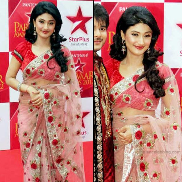 Ragini Khanna Hindi TV Actress CelebTS1 8 hot Saree photos