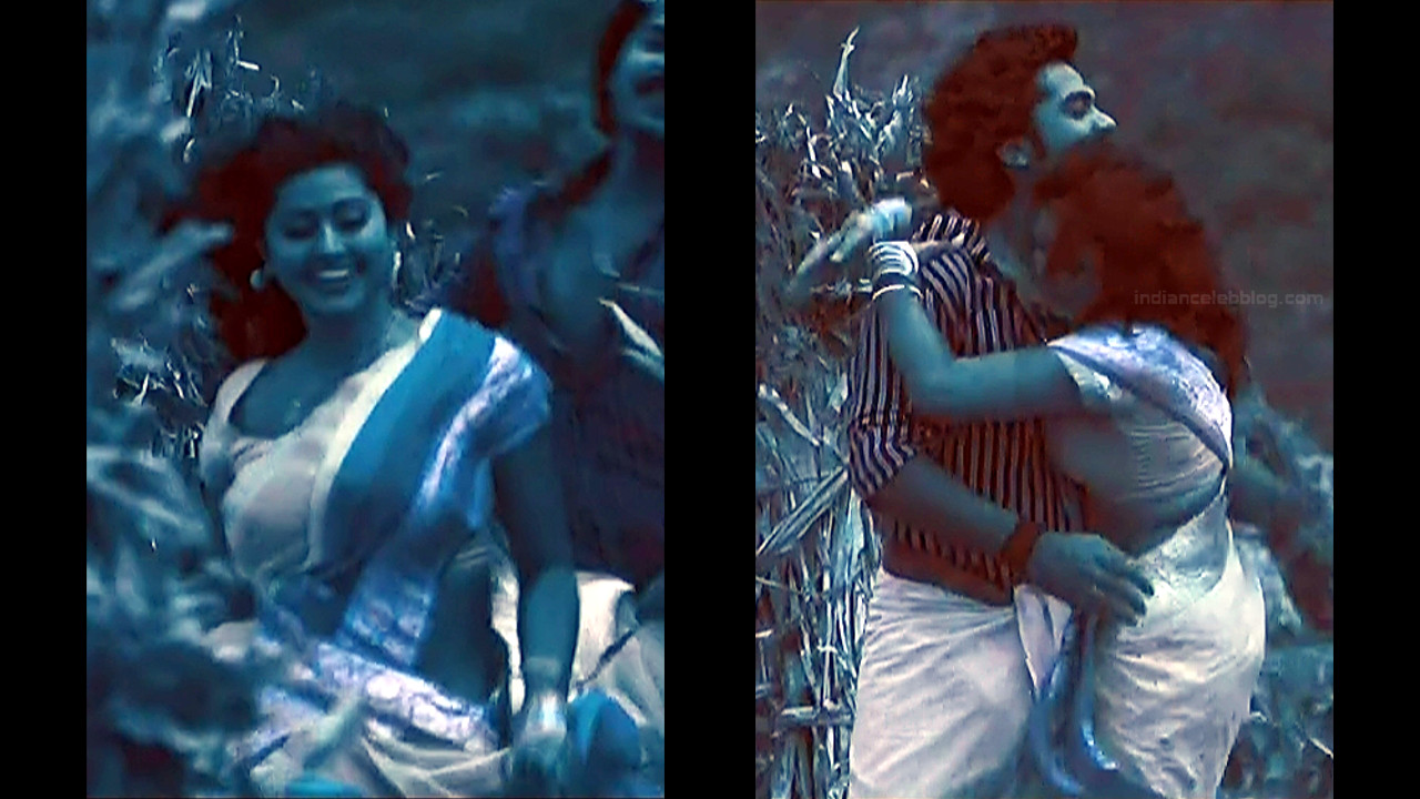 Sneha Sexy Navel Show Hd Song Caps Mix  Indian Celeb Blog-3741