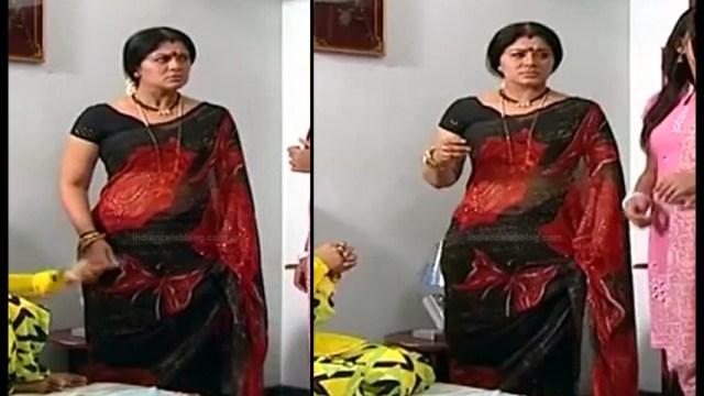 Sudha chandran Tamil TV actress PonDTS1 13 hot saree photo